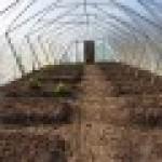 Ökologischer Anbau